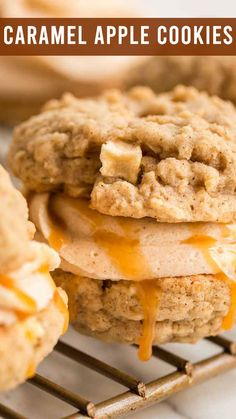 Soft and chewy caramel apple cookie sandwiches are filled with brown sugar and cinnamon buttercream frosting and a drizzle of salted caramel. Think of the perfect caramel apple pie you can eat with your hands. Caramel Apple Cookies, Caramel Apple Cheesecake, Caramel Apples, Best Apple Recipes, Fall Recipes, Favorite Recipes, Snicker Apple Salad, Apple Pie, Making Half A Recipe