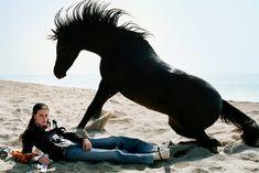 Gucci-Kampagne creative campaign See horses roam LA for the Gucci campaign - i-D Alessandro Gucci, Alessandro Michele, Cbr, Save Wildlife, Animal Action, Gucci Brand, Editorial, Gucci Spring, Models