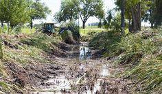 Semanario / Junin Regional: Trabajos en la laguna y en los barrios Moya, Real ...