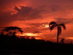 """at dawn"" taken at Hacienda Luisita, Philippines"