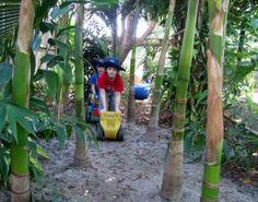 I love the pathwath through the banana trees!