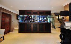 Stephen Ireland's Freestanding Fish Tank   Aquarium Architecture Wall Aquarium, Aquarium Stand, Aquarium Heater, Glass Aquarium, Home Aquarium, Tropical Aquarium, Aquarium Design, Reef Aquarium, Cool Fish Tanks