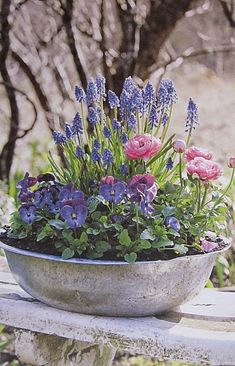 ✔ 38 cheap and easy landscaping ideas for front yard 2 Container Flowers, Container Plants, Container Gardening, Small Front Gardens, Diy Easter Decorations, Diy Decoration, Deco Floral, Garden Landscaping, Landscaping Ideas