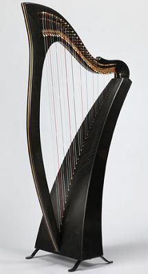 Carbon fiber harp. Saw/heard/played one today- nice sound. And very very light.