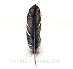Original 7x9 Watercolour Feather No.14. NOT by happyapplebumblebee, $26.00