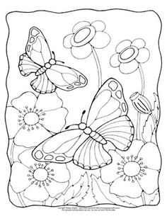 Realistic butterflies and flowers coloring page