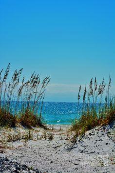Pensacola Beach Photograph  - Pensacola Beach Fine Art Print