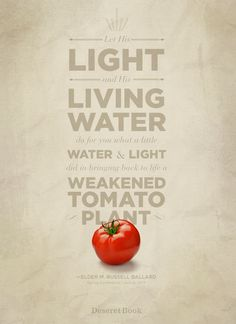 """Let His light and His living water do for you what a little water & light did in bringing back to life a weakened tomato plant."" Elder M. Russell Ballard #ldsconf #lds #generalconference #christian"