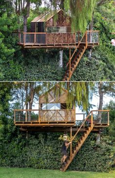 The treehouse is built from SIP panels and has a cedar-shingled roof. Accessed through a staircase, it stands supported by three trees that can be seen passing through the floor and ceiling of the structure. Sip Panels, Backyard Treehouse, Tree Branches, Trees, Charred Wood, Treehouses, Another World, Play Houses, Garden Bridge