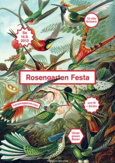 Rosengarten Festa - Berlin