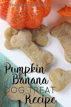 Homemade Dog Food Reward your furry friend this fall with a homemade treat. Get this Pumpkin Banana Dog Treat Recipe at Sparkles of Sunshine today. Dog Cookie Recipes, Homemade Dog Cookies, Dog Biscuit Recipes, Homemade Dog Food, Dog Treat Recipes, Dog Food Recipes, Peanut Recipes, Puppy Treats, Diy Dog Treats