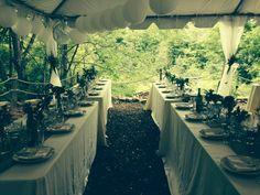 Wedding 8/16/2014