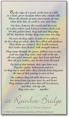 Soft Rainbow Memorial Card by SmartPractice                                                                                                                                                                                 More