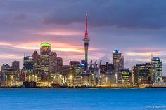 Ese horizonte. ¡PUAJ! | 27 Razones por las que nunca deberías visitar Nueva Zelanda