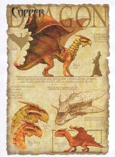 Dragon de cuivre