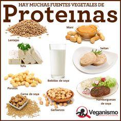 proteinas-en-la-dieta-vegana-vegetariana-mitos-y-realidades-infografia-1