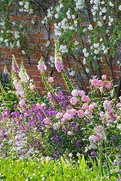 Layering heights in an english garden. English Cottage Garden, Garden Shrubs, English Garden Style, English Country Gardens, Beautiful Gardens, Cottage Garden, Country Gardening, Plants, Garden Inspiration