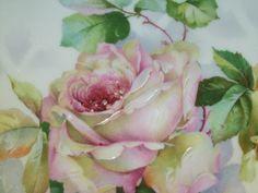 Pink Rose China Patterns - Bing Images