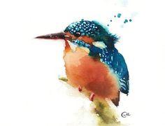 Watercolor Birds on Behance Watercolor Sketchbook, Watercolor Bird, Watercolor Illustration, Watercolor Paintings, Watercolors, Vogel Illustration, Sparrow Art, Kingfisher Bird, Bird Drawings