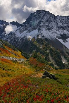 Sahale arm trail above Cascade Pass, North Cascades, USA (by Chris Mayhew).