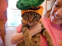 Happy Halloween, Violet!