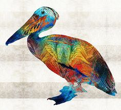 Colorful Pelican Art By Sharon Cummings by Sharon Cummings
