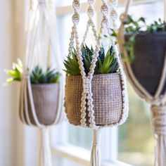 Love this grouping of macrame plant hangers in my home.