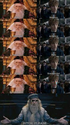 Harry Potter World Movies long Harry Potter Movies By Year. Harry Potter World Gringotts, Harry Potter Movies To Watch Estilo Harry Potter, Mundo Harry Potter, Harry Potter Jokes, Harry Potter Fandom, Harry Potter Characters Names, Harry Potter Imagines, Harry Potter Actors, Harry Potter Hogwarts, Harry Potter World