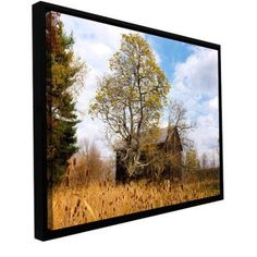Cody York Cvnp Barn Floater-Framed Gallery-Wrapped Canvas, Size: 16 x 24, Silver