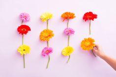 Desktop-FloralGrid1.jpg (2400×1600)