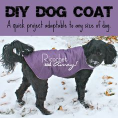 Ricochet and Away!: DIY Dog Coat -- I definitely need to make one for Sadie -- her coat is so short, she's going to get cold!