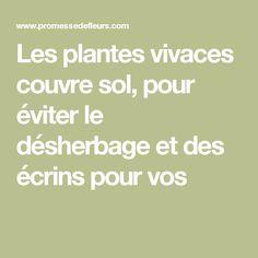 Les plantes vivaces couvre sol, pour éviter le désherbage et des écrins pour vos
