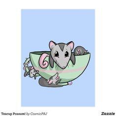 Teacup Possum! Postcard