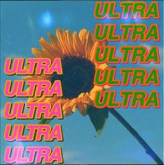 "I'm going to start using the word ""ultra"". That's so ultra."