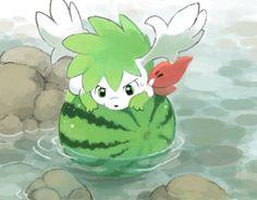 Shaymin sky forme on a watermelon