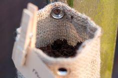 hanging herb garden - I like this. Repin! Outdoor Spaces, Outdoor Living, Hanging Herbs, Homestead Gardens, Herb Garden, Natural Health, Outdoor Gardens, Helpful Hints, Garden Ideas