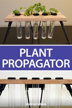 Propagate plants aesthetically with a simple propagator made from wood, glass storage rubes, and 3D printed parts.#Instructables #workshop #3Dprint #gardening #Fusion360 Garden Art, Garden Plants, Indoor Plants, House Plants, Garden Tools, Indoor Outdoor, Fusion 360, Diy Cabin, Engineering Projects