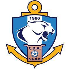 campeonato chileno 2017