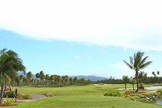 International golf club - Rio Grande, Puerto Rico features 36 holes of championship golf.