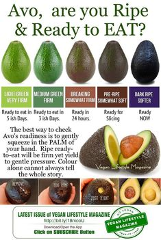 Avocado Nutrition: 15 Powerful Health Benefits of Eating Avocado Based On Science - Medical Magazine Cooking 101, Cooking Recipes, Cooking Hacks, Avocado Recipes, Vegan Recipes, Guacamole Recipe Easy, Avocado Health Benefits, Avocado Nutrition Facts, Avocado Facts