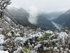 Overlooking Doubtful Sound New Zealand  #landscape #overlooking #doubtful #sound #zealand #photography