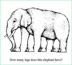 Quantas pernas tem este elefante? / ¿Cuántas patas tiene este elefante?