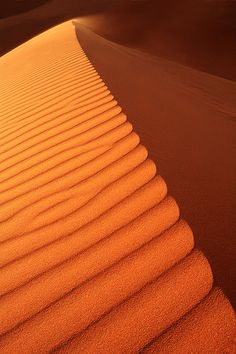 Sculpted sand dune in shadow and orange sunlight.