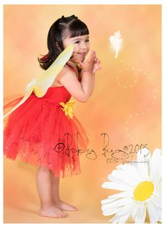 Beautiful fairy costumes 9 to 18 months