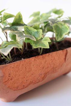 Gliniana doniczka z bluszczem. Polska sztuka ludowa. Ceramic planter with hedera. Polish folk art. #wabisabi #ceramicplanter #houseplant #polishfolk