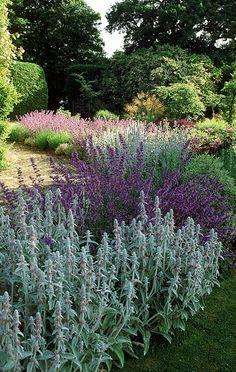 Contemporary Cottage Garden - Surrey
