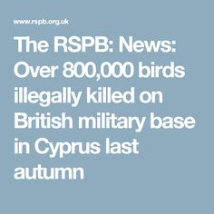 The RSPB: News: Over 800,000 birds illegally killed on British military base in Cyprus last autumn