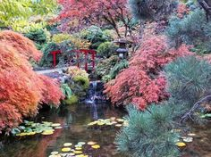 Butchart Gardens 3