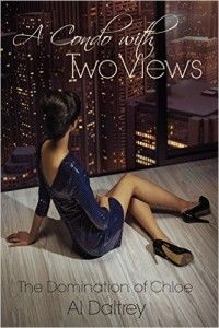 A Condo With Two Views is a book that highlights the different ways that men and women have to see the world of sexuality. Dominants and submissive have also a very different approach to sex and this novel tells the story of a kinky love from two different perspectives: Jack's and Chloe's.