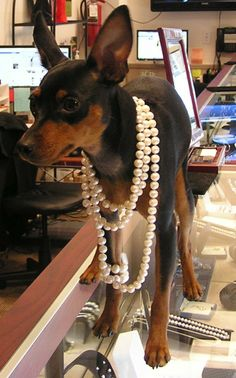MinPin and Pearls!